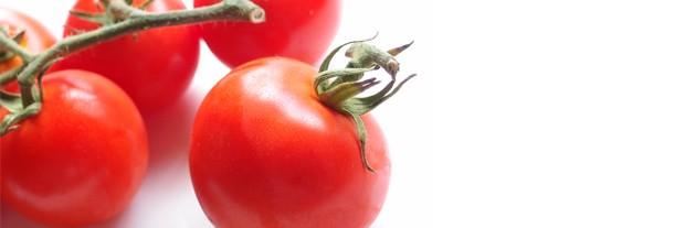 Comer saludablemente previene la obesidad infantil