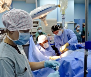 La cirugía restrictiva contra la obesidad consiste en reducir el tamaño del estómago