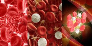 Existe una serie de alimentos que pueden ser útiles para aumentar el número de plaquetas