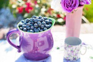 arandanos-fruta