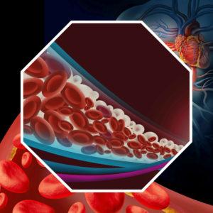 Es fundamental para la salud saber cómo bajar y controlar los niveles de colesterol.