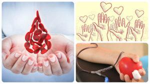 Para realizar una donación de médula ósea es necesario cumplir una serie de requisitos.