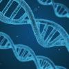 El test genético para adelgazar busca combatir los problemas derivados del exceso de peso