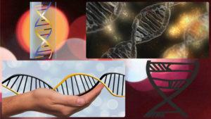 Con el test genético para adelgazar también se busca prevenir futuras patologías.