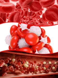 La hemoglobina es una proteína que está presente en los glóbulos rojos encargados de transportar oxígeno.