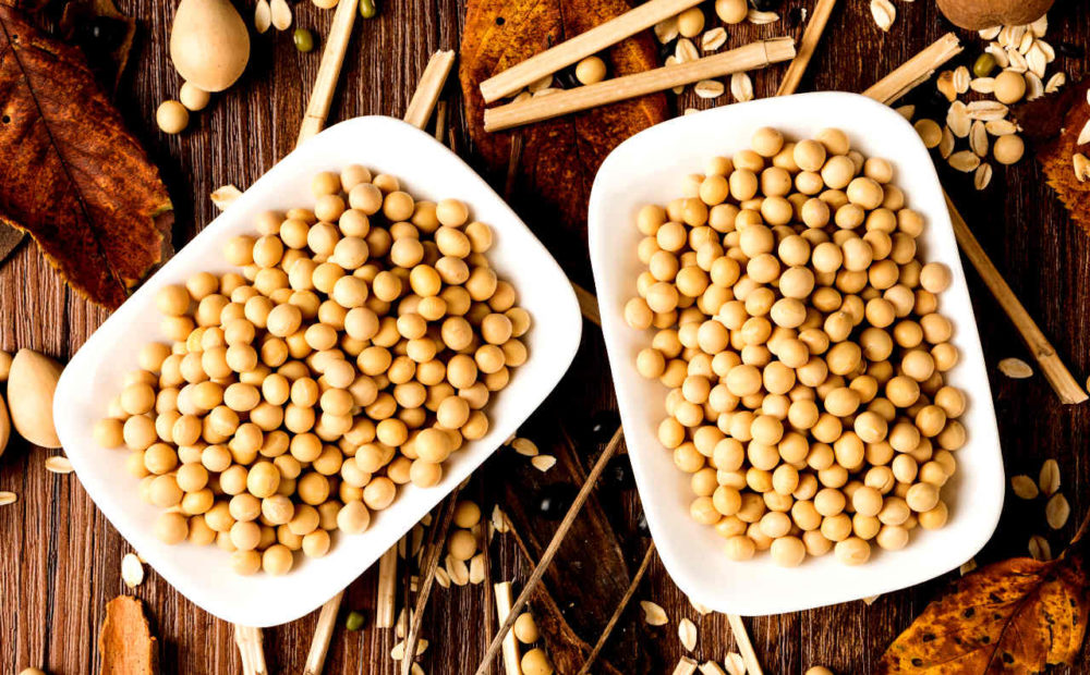La proteína de soja es muy recomendable para aliviar enfermedades inflamatorias intestinales.