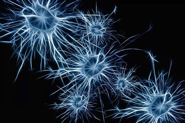 Descubrimientos científicos sobre el Alzheimer