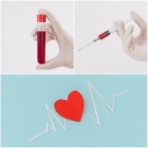 Las plaquetas son fundamentales para la coagulación de la sangre y la cicatrización de heridas.