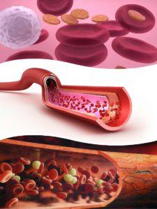 Las plaquetas son unos componentes de la sangre fundamentales para la coagulación y la cicatrización de heridas