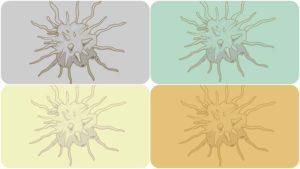 El hematólogo es el especialista más adecuado para prescribir un tratamiento para las plaquetas bajas