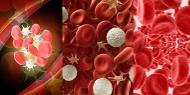 Mediante un análisis de sangre se puede saber si una persona está en sus niveles normales de plaquetas.