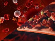 Una alimentación sana en frutas y verduras ayudará a preservar los valores normales de plaquetas.