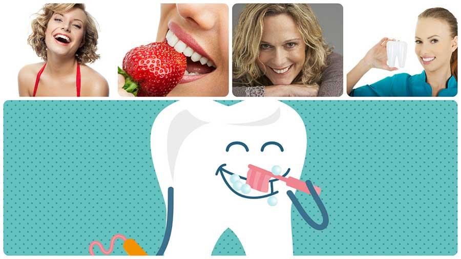 La endodoncia en Alicante es un tratamiento que permite reparar un diente sin tener que llegar a extraerlo.