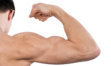 Aumento del brazo (bíceps y tríceps) en Almería