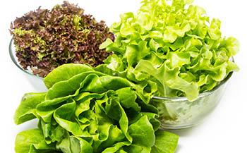 La comida saludable es la mejor opción para impedir la aparición de esos kilos de más.
