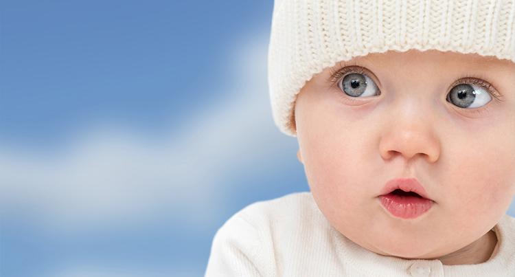 La fecundación in vitro y la inseminación artificial son los dos principales tratamientos de fertilidad en Madrid.